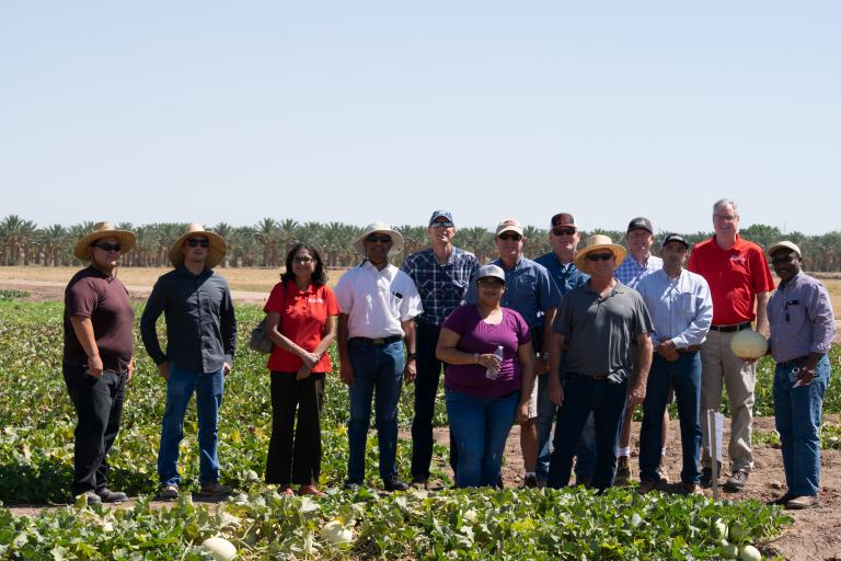2018 Melon Field Day hosted by YCEDA at the Yuma Ag Center